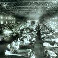 スペイン風邪(H1N1)について
